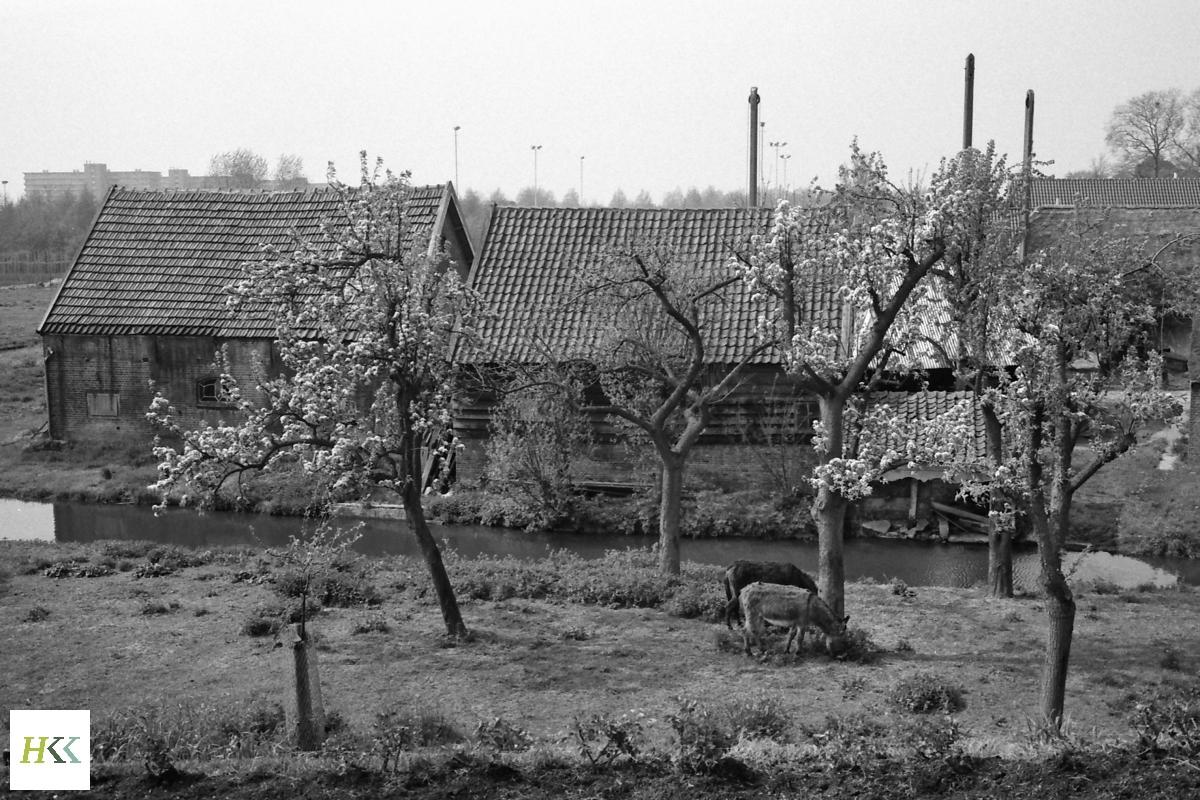 HKK4-032 - boerderij langs de IJsseldijk