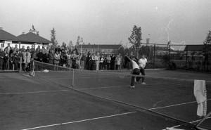 B3579 - Tennis
