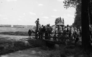 B4243 - Kijken naar het paard op de manege